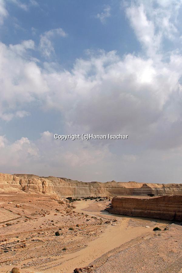 Israel, the Negev desert. Flood in Wadi Zin