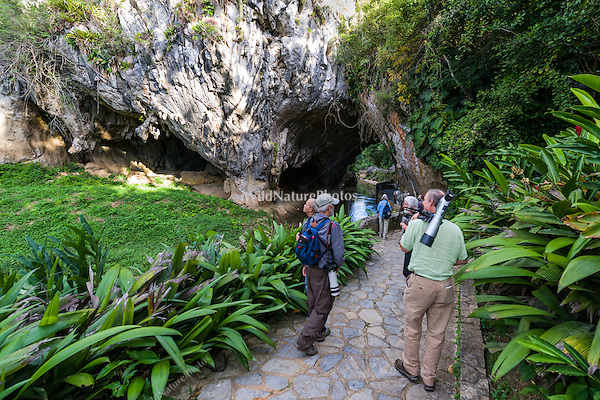 Bird-watchers at La Cueva de los Portales, La Güira National Park, Cuba