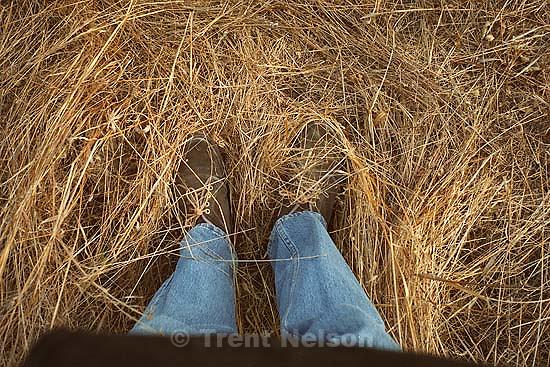 Trent feet in weeds<br />