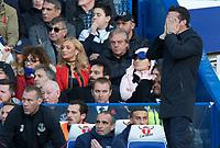 Chelsea v Everton - 11.11.2018