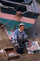 Afrique/Maghreb/Maroc/El-Jadida : Le port de pêche, pêcheur triant leur pêche