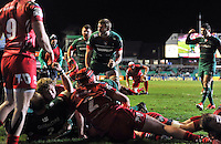 Tom Croft of Leicester Tigers celebrates a try. European Rugby Champions Cup match, between Leicester Tigers and the Scarlets on January 16, 2015 at Welford Road in Leicester, England. Photo by: Patrick Khachfe / JMP