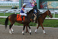 January 17, 2015:Runhappy (KY) with Shaun Bridgmohan in the Lecomte Stakes at the New Orleans Fairgrounds course. Steve Dalmado/ESW/CSM