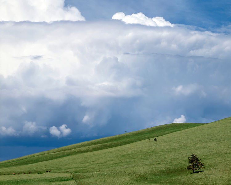 Cloud formations and grasslands in the White Mountains; Apache-Sitgreave National Forest, AZ