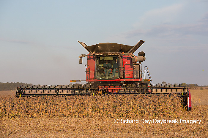 63801-07208 Soybean harvest with Case IH combine in Marion Co. IL