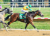 Talent N Passion winning at Delaware Park on 9/19/15
