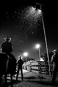 Spectators and participants watch under the arena lights at the Mason, Texas rodeo on July 14, 2007.