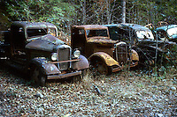 old cars, antique, rusted out automobiles. Jawbone Flats Oregon United States Opal Creek.
