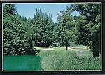 FB 79R.  Boulder Creek, CA. 5x7 postcard