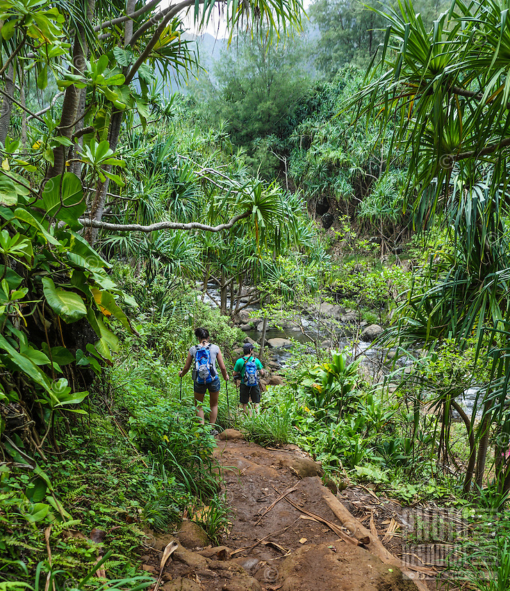 Hikers on the Kalalau Trail near Hanakapi'ai Stream, Kaua'i.