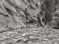 Zion Narrows II