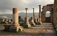 The Roman Basilica, 217 AD, used as courts of justice and city governance, with its colonnaded facade which lined the Forum or marketplace on the right, Volubilis, Northern Morocco. Storks sit on a nest atop one of the columns. Volubilis was founded in the 3rd century BC by the Phoenicians and was a Roman settlement from the 1st century AD. Volubilis was a thriving Roman olive growing town until 280 AD and was settled until the 11th century. The buildings were largely destroyed by an earthquake in the 18th century and have since been excavated and partly restored. Volubilis was listed as a UNESCO World Heritage Site in 1997. Picture by Manuel Cohen