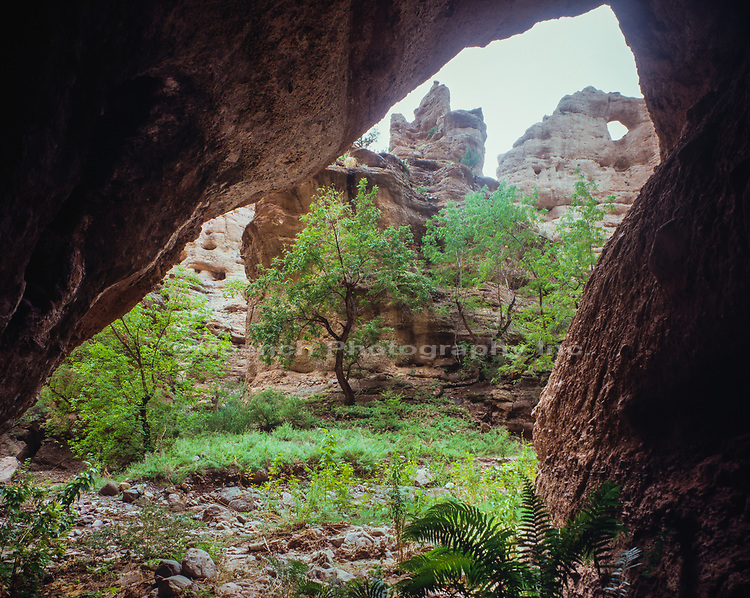 Hell Hole,Aravaipa Canyon Wilderness,Arizona