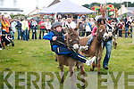 Ross Sugrue(Tralee)on Flash leads as Jamie Chawke(Tralee)steadies his 5yr old son Mark on Hot Stepper to go on and win the Donkey Darby race last Sunday evening at the Fenit SeaBreeze festival last Weekend..