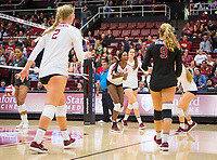 STANFORD, CA - October 12, 2018: Kathryn Plummer, Tami Alade, Audriana Fitzmorris, Morgan Hentz at Maples Pavilion. No. 2 Stanford Cardinal swept No. 21 Washington State Cougars, 25-15, 30-28, 25-12.