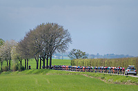 Peloton in spring<br /> <br /> 52nd Amstel Gold Race (1.UWT)<br /> 1 Day Race: Maastricht › Berg en Terblijt (264km)
