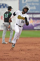 Burlington Bees left fielder Torii Hunter (22) in action against the Dayton Dragons at Community Field on May 3, 2018 in Burlington, Iowa.  (Dennis Hubbard/Four Seam Images)