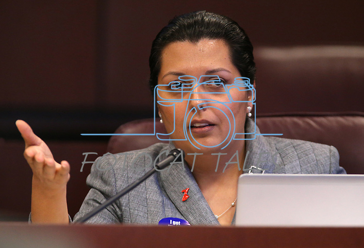 Nevada Assemblywoman Olivia Diaz, D-North Las Vegas, works in committee at the Legislative Building in Carson City, Nev., on Tuesday, Feb. 10, 2015. <br /> Photo by Cathleen Allison