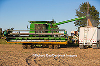 63801-07205 Farmer harvesting soybeans, Marion Co., IL