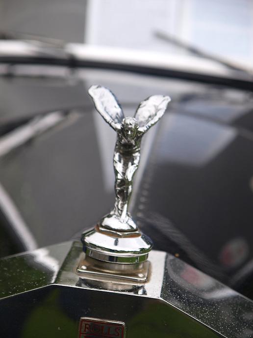 Car Ornaments/Hood Decor