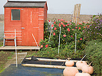 Allotment garden and shed, Shottisham, Suffolk, England