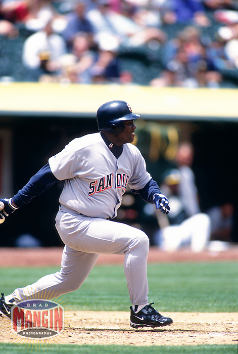 OAKLAND, CA - Tony Gwynn of the San Diego Padres bats during a game against the Oakland Athletics at the Oakland Coliseum in Oakland, California in 1998. Photo by Brad Mangin
