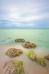 Limestone, Florida Keys