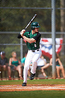 Dartmouth Big Green second baseman Dustin Shirley (6) at bat during a game against the Eastern Michigan Eagles on February 25, 2017 at North Charlotte Regional Park in Port Charlotte, Florida.  Dartmouth defeated Eastern Michigan 8-4.  (Mike Janes/Four Seam Images)