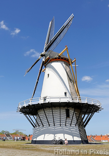 De Oranjemolen is een korenmolen en voormalige pelmolen aan de Oranjedijk in Vlissingen en is door zijn ligging zowel een goede windvanger als een blikvanger. Het is een stellingmolen