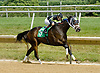 Rusty Charlie winning at Delaware Park on 6/27/12