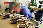 NEW YORK - MAY 05, 2006:  Coffee is tested at the New York Board of Trade on May 5, 2006 in New York City.  (Photo by Michael Nagle).