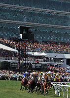 First turn action<br /> VRC Spring Racing Carnival <br /> 155th Melbourne Cup / Race 7<br /> Flemington Racecourse / Melbourne <br /> Australia  Tuesday3rd November 2015<br /> &copy; Sport the library / Jeff Crow