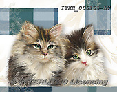 Isabella, REALISTIC ANIMALS, REALISTISCHE TIERE, ANIMALES REALISTICOS, paintings+++++,ITKE066165-LV,#a#, EVERYDAY ,cats ,collage