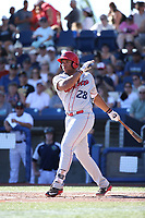 Curtis Terry (28) of the Spokane Indians bats against the Hillsboro Hops at Ron Tonkin Field on July 22, 2017 in Hillsboro, Oregon. Spokane defeated Hillsboro, 11-4. (Larry Goren/Four Seam Images)