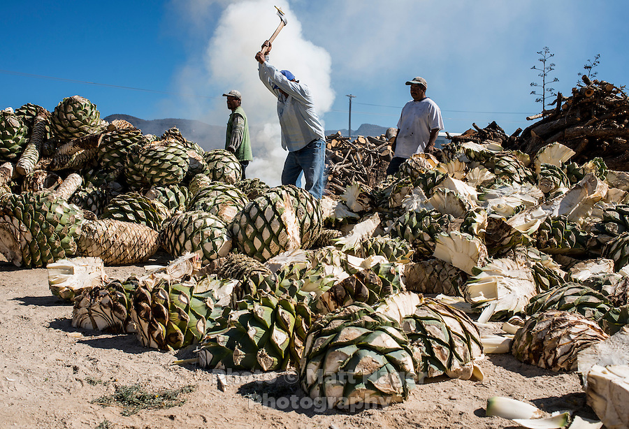 The Oro del Oaxaca mezcal factory and workers near Teotitlan del Valle and Oaxaca, Mexico, February 2015.<br /> <br /> Photo by Matt Nager