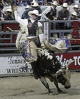 "29 Aug 2004: PRCA Rodeo Bull Rider Kyle Joslin ranked 40th in the world riding ""Magic"" during the PRCA 2004 Extreme Bulls competition in Bremerton, WA."
