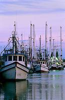 Docked shrimpboats on an overcast day.