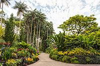 Singapore Botanic Garden, Pathway in National Orchid Garden.