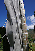A section of the traditional, long, narrow, prayer flag seen throughout Bhutan tied to a weathered post with a dark blue clouded sky and the green mountains in the background. The black printing can be seen on the off whte flag.