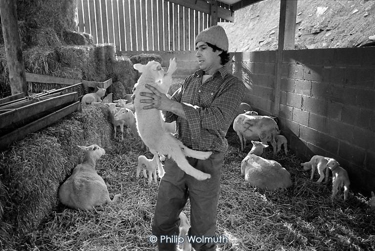 Martin Orbach, Cwm Farm, 1988