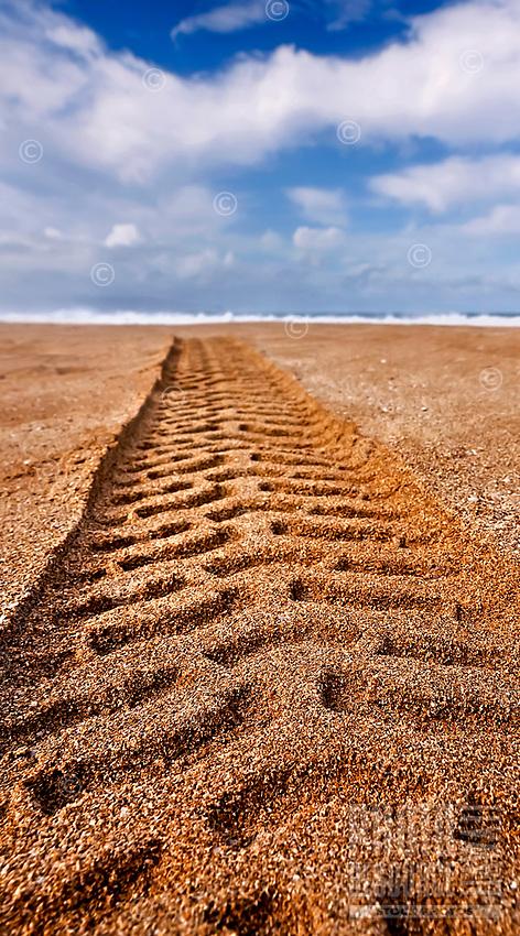Tires tracks on 'Ehukai Beach near the Banzai Pipeline, North Shore, O'ahu.