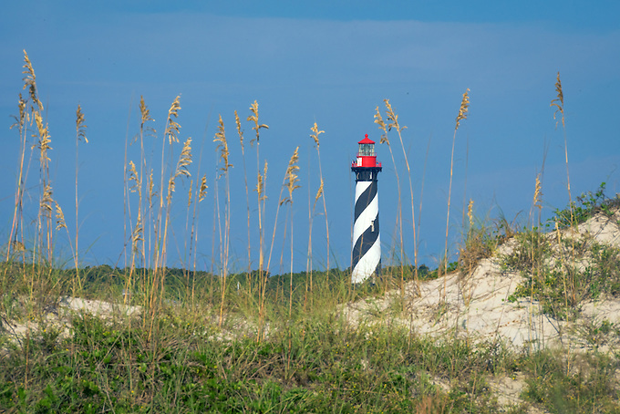 The historic St. Augustine lighthouse on Anastasia Island photographed from a nearby beach in soft early morning light.