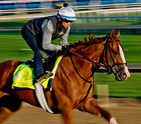 LOUISVILLE, KY - MAY 01: Good Magic, trained by Chad Brown, exercises in preparation for the Kentucky Derby at Churchill Downs on May 1, 2018 in Louisville, Kentucky. (Photo by Scott Serio/Eclipse Sportswire/Getty Images)