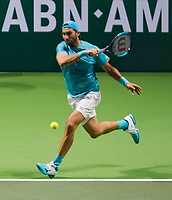 Rotterdam, The Netherlands, 17 Februari 2019, ABNAMRO World Tennis Tournament, Ahoy, final, doubles, Horia Tecau (ROU),<br /> Photo: www.tennisimages.com/Henk Koster
