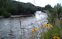NWA Democrat-Gazette/FLIP PUTTHOFF <br /> Bike trails often follow water. Riders follow the Blue River on the ride north from Silverthorne, Colo.