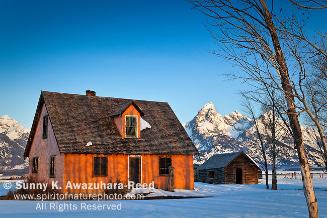 A historic house, John & Bartha Moulton Residence, at Mormon Row, Antelope Flat in Grand Teton National Park, WY on a sunny morning.  Winter scene.