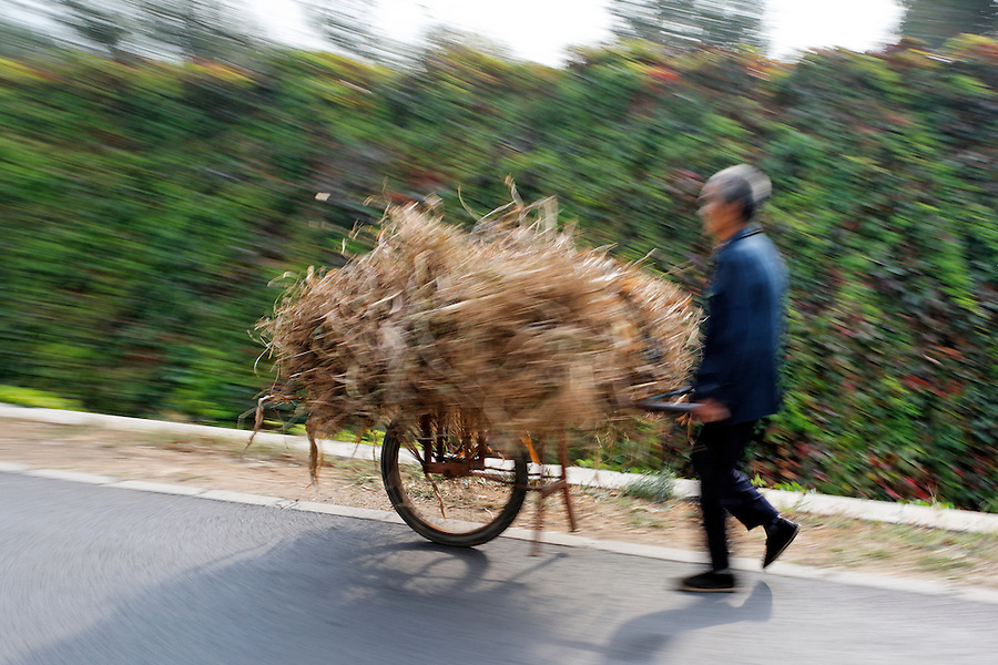 Man pushing cart of hay along road, China, Asia