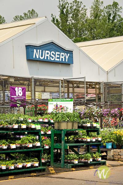 Lowes Nursery department.