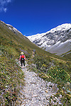 Hiker in Otira Valley, Arthur's Pass NP, South Island, New Zealand