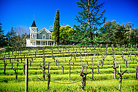 St. Clement Vineyards, Napa Valley, California USA